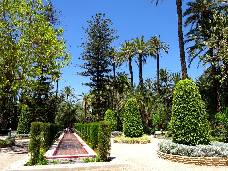exotic flora at El Palmeral in Elche