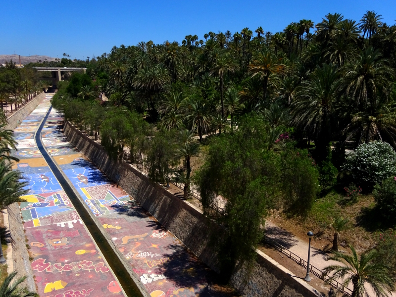 el palmeral painted riverbed and palm trees