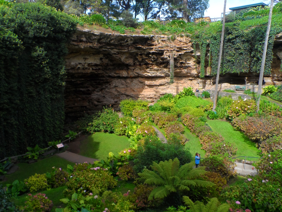 The Midnight Inhabitants of Mt. Gambier's Umpherston Sinkhole